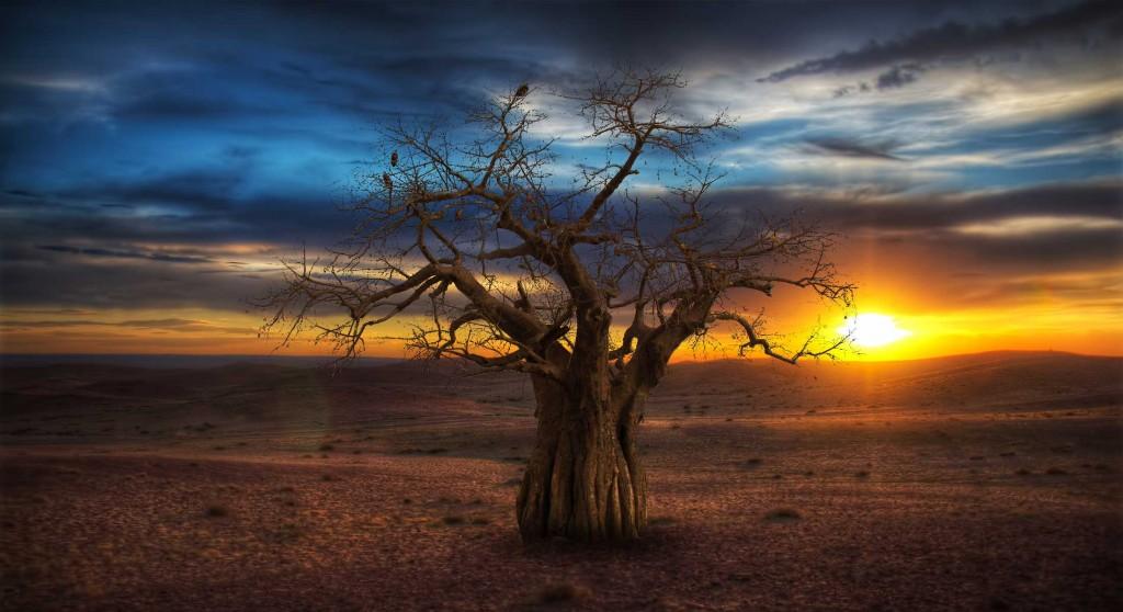 Kalahari.com