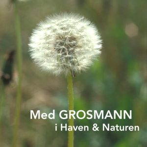 Med Grosmann i Haven & Naturen