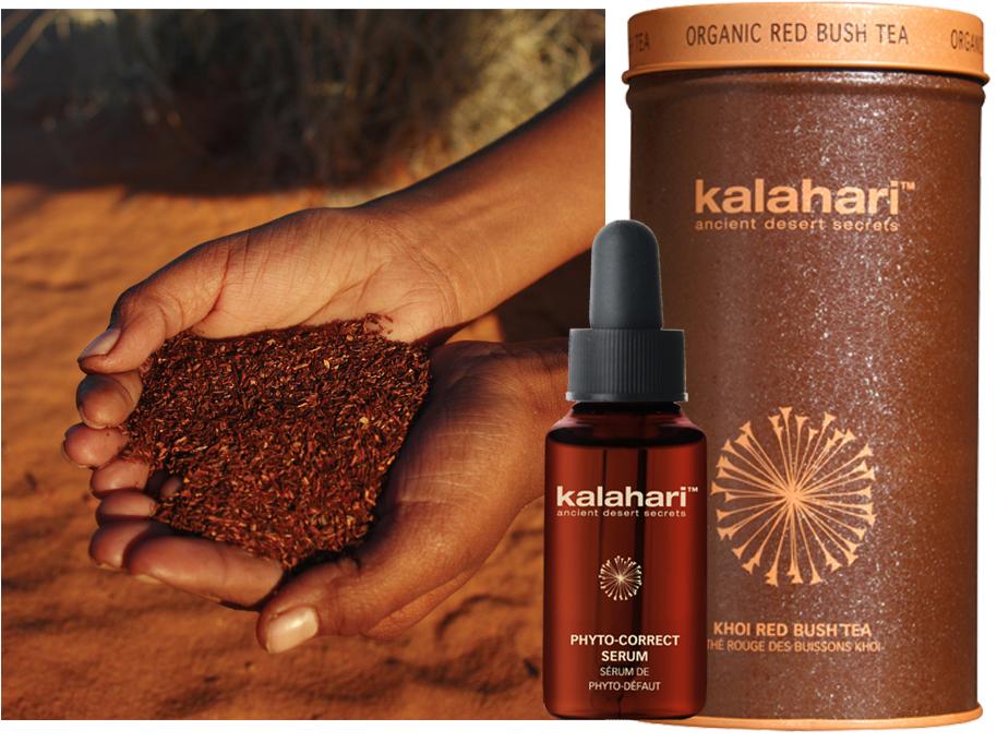 BeautyBlog-kalahari-rooibos-correct-serum