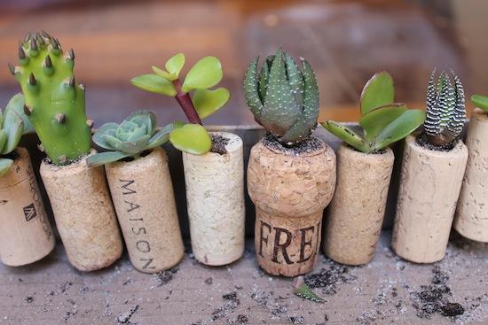 cork_planters11